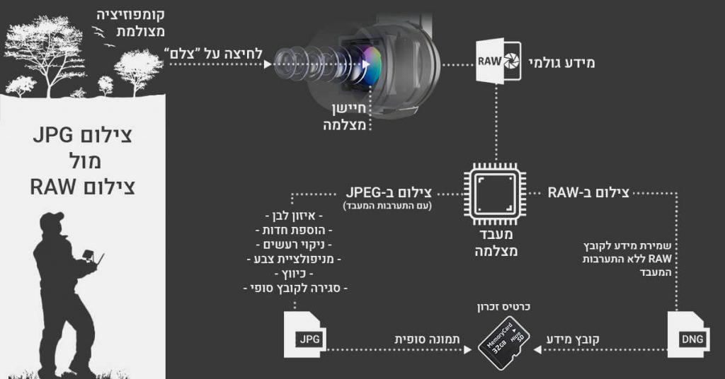 דיאגרמת הבדלים בין RAW ל-JPEG
